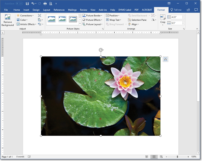 How To Compress Files Sizes Of Photos Or Graphics In Microsoft Word Documents